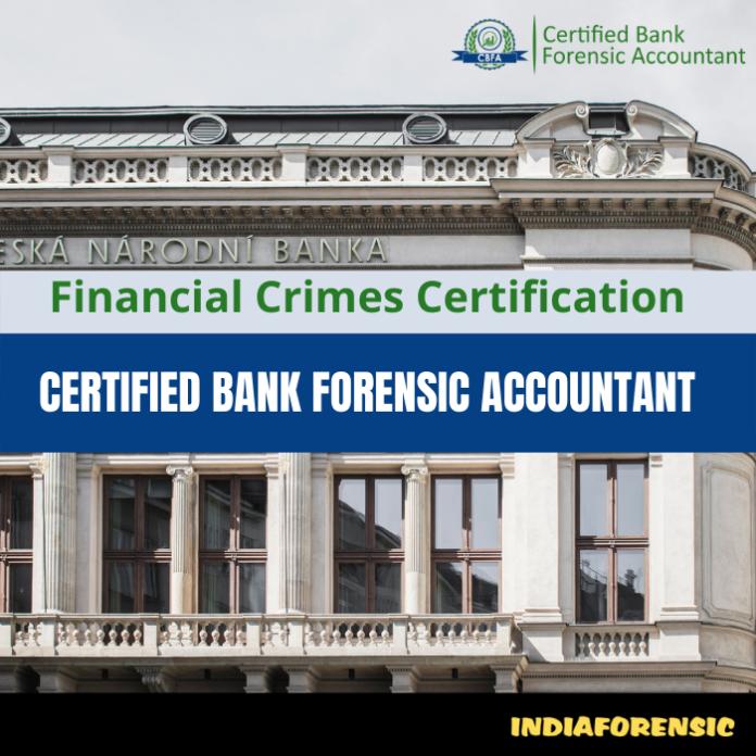 Bank Forensic Accountant
